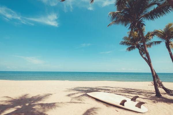 seaspecs watersport zonnebrillen achtergrond
