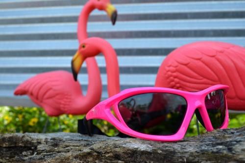 Seaspecs de beste watersport zonnebrillen